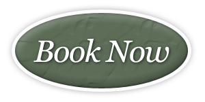 Book now button1 Spa Packages